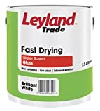 2.5LTR - LEYLAND PAINT FAST DRYING GLOSS OFF WHITE RANGE MERCURY