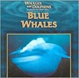 img - for Blue Whales (Whales and Dolphins) book / textbook / text book