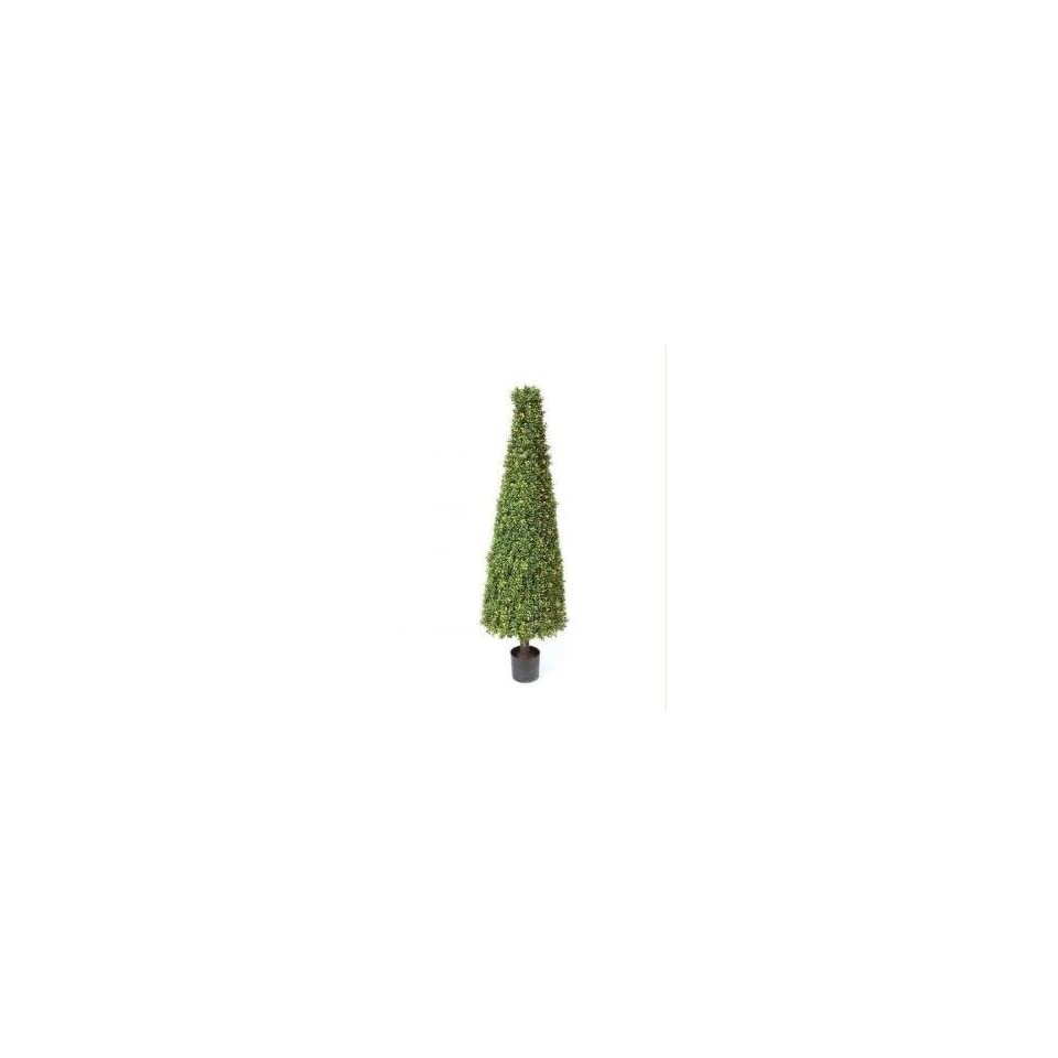 5 Winter Solace Pre Lit Potted Artificial Boxwood Cone Tree Christmas Topiary