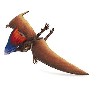 Safari Ltd Dinosaur and Prehistoric Life Collection - Tapejara- Soaring and Realistic Hand Painted Toy Figurine Model - Quality Construction from Safe and BPA Free Materials - For Ages 3 and Up