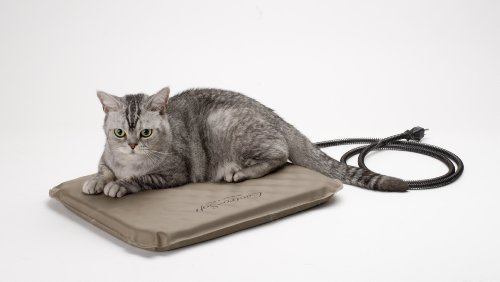 Finally Carry the Newest Outdoor Heated Dog Pad for Small Dogs & Cats