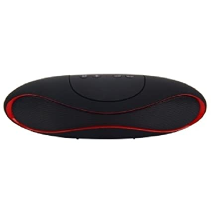 Delsys SR-PG-04 Wireless Speaker