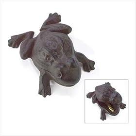 Frog Key Hider