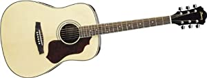 Ibanez Sage Series SGT120 Acoustic Guitar - Natural