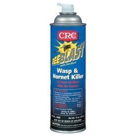 bee-blasttm-wasp-hornet-killer-bee-blast-wasp-hornetspray-20-oz-aerosol-set-of-12-by-crc