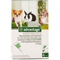 Advantage Green 4 Pack Small Cats or Rabbits 3- 10 Pounds (4kg)