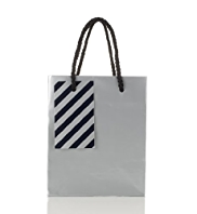 Silver Metallic Small Gift Bag