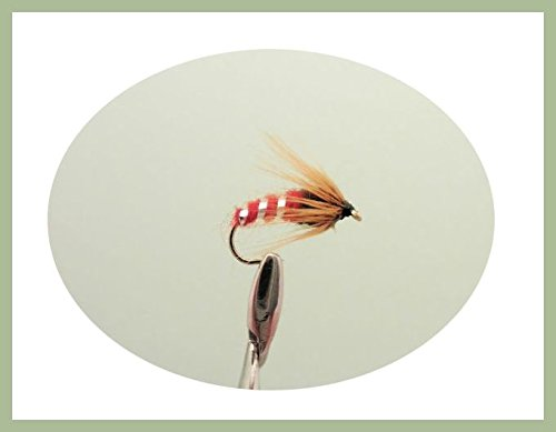 Confezione da 12Sedge pupa Fly-rosso- Ninfa Mosche di Pesca. Mixed misure 10-14