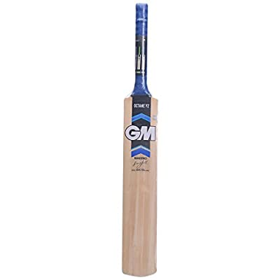 GM Octane F2 Maestro Kashmir Willow Cricket Bat