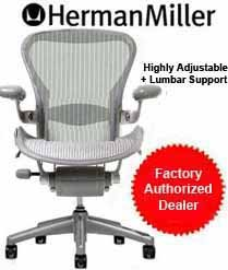 Aeron Chair by Herman Miller - Home Office Desk Task Chair Fully Loaded Highly Adjustable Medium Size (B) - Lumbar Back Support Cushion Titanium Smoke Frame Classic Glacier Pellicle