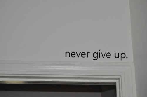 Never Give Up.. Over the