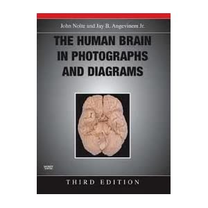 Human Brain in Photographs and Diagrams 3rd edition PDF by John Nolte