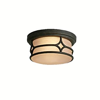 lighting 9867agz chicago 2 light indoor outdoor flush mount ceiling