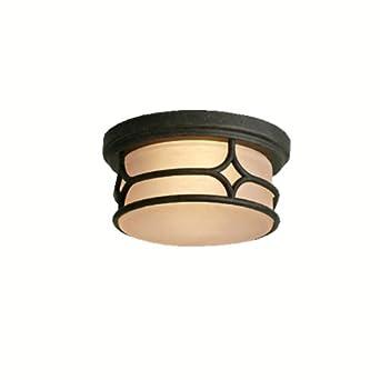 lighting 9867agz chicago 2 light indoor outdoor flush mount ceiling