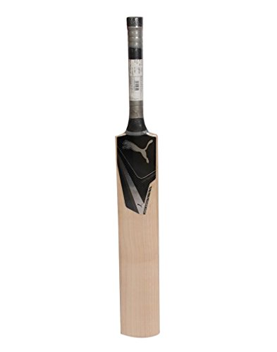 Puma Puma Platinum Black Edition English Willow Bat, Men (Black)