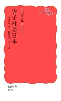 少子社会日本―もうひとつの格差のゆくえ (岩波新書)