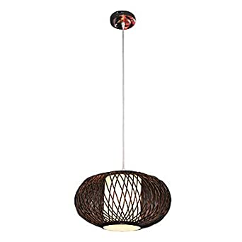 Nature Inspired 1 Light Pendant Light Chandeliers
