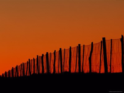 Wire Fence Stretching 3,307 Miles Across Australia's Interior
