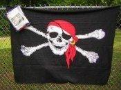 "Pirate Polar Fleece 50"" X 60"" Throw Blanket front-69114"