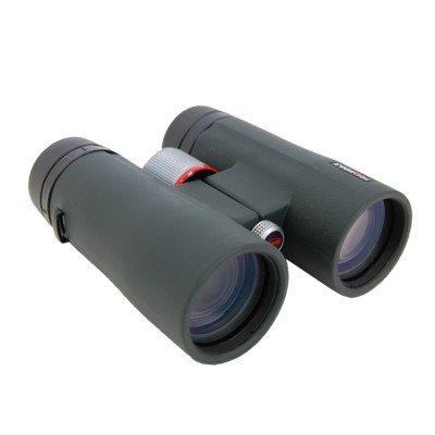 Kowa Bd42-10Xd Full Size 10X42 Prominar Xd Lens Binoculars, Green