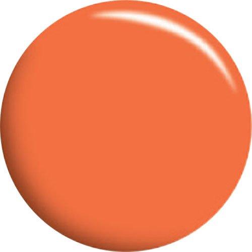カルジェル ライトオレンジ 4g CGA27S 正規代理店品