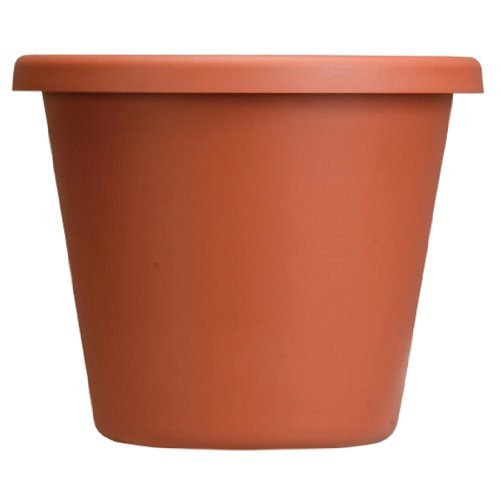 Classic Clay Flower Pot 12 Inches