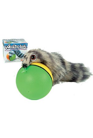 Buy Cheap Weazel Ball Weasel Kids Toy Chasing Rolling Play - Drive your Pet Crazy