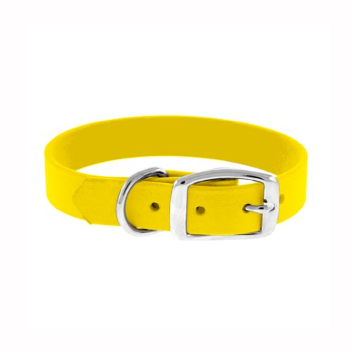 the-perfect-leash-perfect-collar-1-inch-wide-by-22-to-24-inch-long-polyurethane-dog-collar-yellow