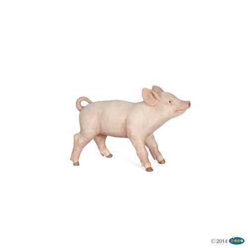 Female Piglet - 1