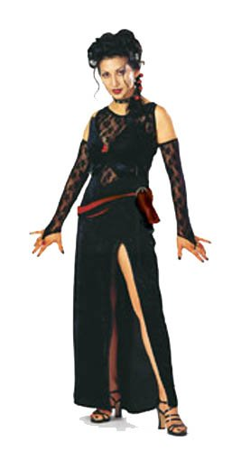 Dark Seductress Adult One Size Costume