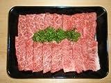 JA上士幌町 北海道 十勝 上士幌町産 十勝ナイタイ和牛 焼肉用