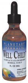 Planetary Formulas Well Child, Echinacea-Elderberry Syrup, 8 Fl Oz (236.56 Ml)