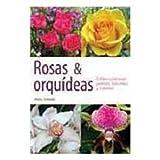 img - for Rosas y orquideas/ Roses and Orchids: Cultivo casero en jardines, balcones y macetas/ Cultivation in Home Gardens, Balconies and Pots (Spanish Edition) book / textbook / text book