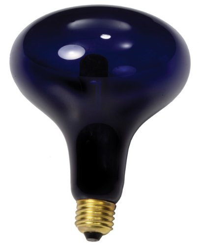 Forum Novelties Large Mushroom Black Light Bulb