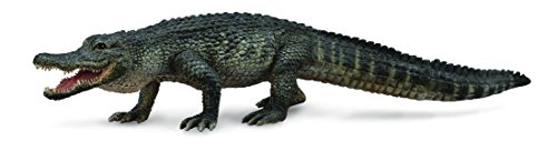 CollectA American Alligator Figure