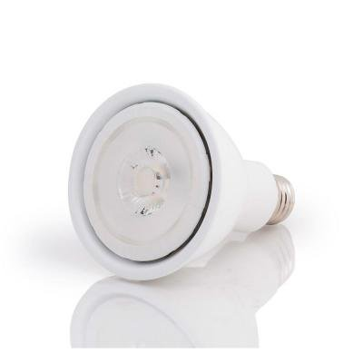 Ecosmart 75W Replacement Led Bright White Par30