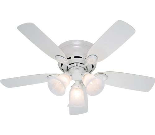 Hunter 21880 Low Profile 42-Inch 5-Blade 3-Light Ceiling Fan, White with Bleached Oak/White Blades and Frosted Glass Shades