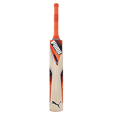 Puma Evospeed 2Y Kashmir Willow Cricket Bat, Size-3