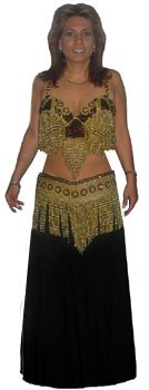 Belly Dancer Super Deluxe Adult One Size Costume