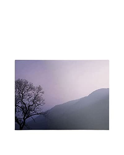 Philippe Sainte-Laudy Purple Hours 2 Canvas Wall Art