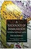 img - for A Sociology of Immigration. Palgrave. 2011. book / textbook / text book