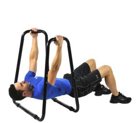 Ultimate Body Press Press Dip Bar Full Body Weight Rows