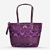 Hot Sale Coach Signature Stripe Purple Multicolor 3 Color Signature Tote Bag 20018