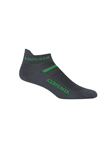 icebreaker-mens-multisport-ultra-light-micro-socks-oil-turf-medium