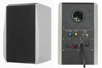 Dynavox TG-1000M Mini-Aktiv Lautsprecher 35 Watt silber (Paar)