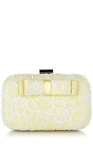 Organza Embroidery Clutch