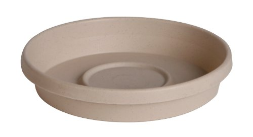 Fiskars 8 Inch TerraTray, Pepperstone (Flower Pot Tray Plastic compare prices)