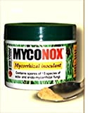 Myconox mycorrhizal