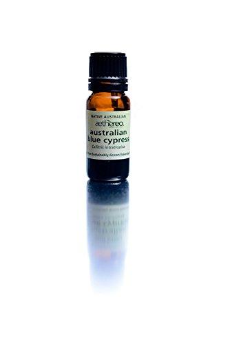 BLUE CYPRESS PURE ESSENTIAL OIL - Callitris intratropica - AUSTRALIA 7.5 ml