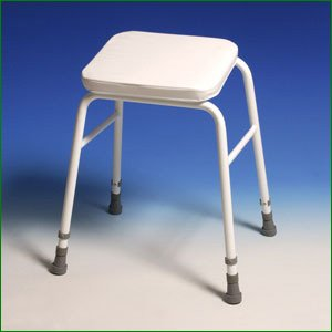 Height Adjustable Perching Stool - Standard